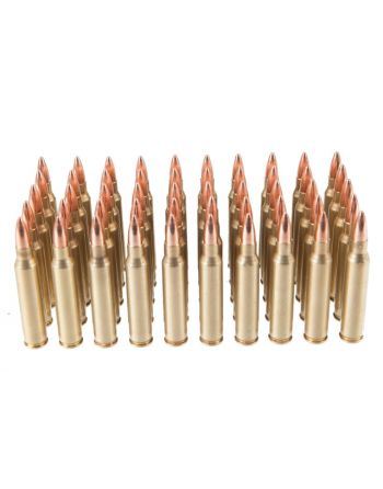 Rainier Munitions Remanufactured .223 Rem 55gr FMJ Box - 500 Rd