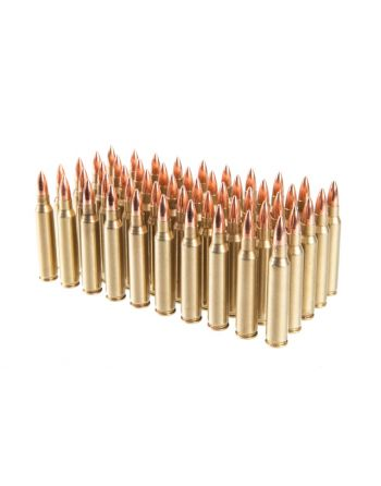 Rainier Munitions .223 Rem 55gr FMJ Match Comp 500 Rd Box