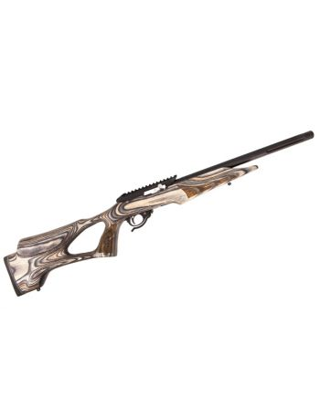Tactical Solutions X-Ring Rifle with Vantage RS Stock